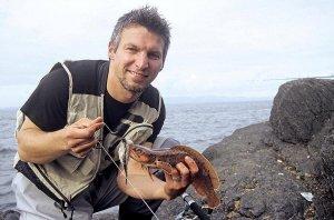 Dreibärtelige Seequappe am Culoo Rock auf Valentia Island