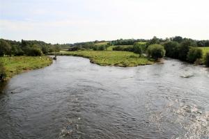 River Slaney (Enniscorthy)