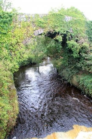 River Arigna