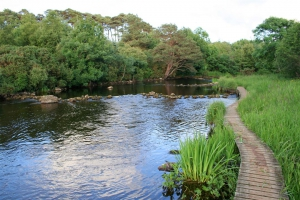 River Drowes (Rosfriar)