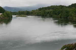 River Laune (Killorglin)
