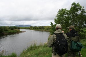 River Moy (Clongee)