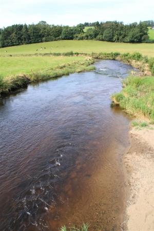 River Slaney (Stratford)