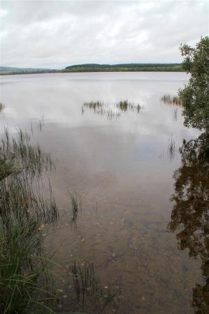 Lough Arrow