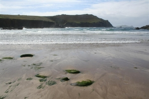 Clogher Beach