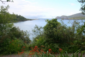Valentia Island - Trabaun Beach