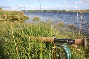 Wrack shore bei Ballyshannon