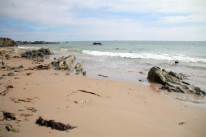 Ballytrent Beach