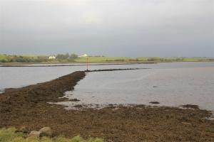 Moy-Mündung (Knockroe)