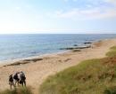 Ballytrent Beach
